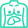 Liver/Kidney Issues Icon